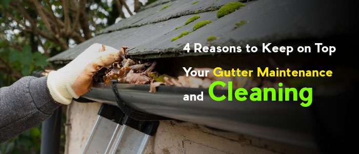 4 Reasons to Keep on Top Your Gutter Maintenance and Cleaning